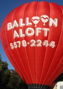 Balloon Company designs-1-8